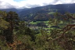 Basler Jura - Solothurn 2