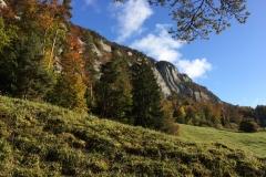 Basler Jura - Solothurn 3