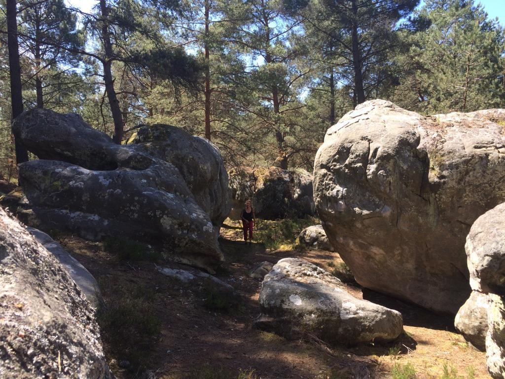 011-Fontainebleau