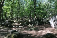 002-Fontainebleau