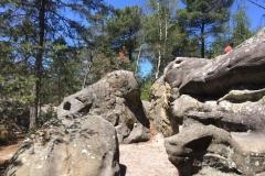 004-Fontainebleau