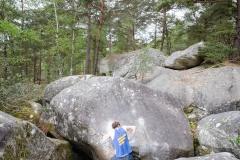 Fontainebleau - Apremont - Belle Gueule 6b+