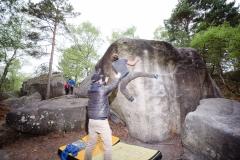 Fontainebleau - Apremont