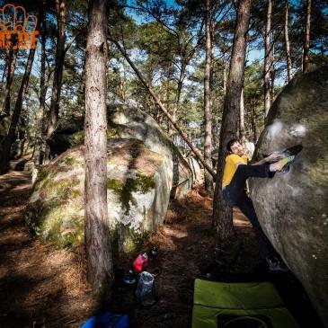 Fontainebleau – Zweiter Tag