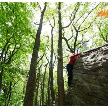 Bouldern in der Pfalz – Haardt – Kalmit