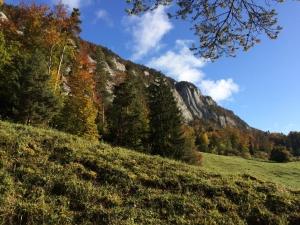 Basler Jura - Solothurn
