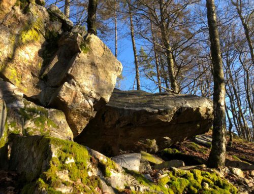 Bouldern im Taunus – Guide nimmt Formen an