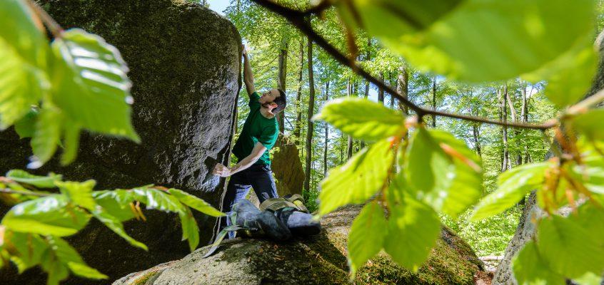 Odenwald – Felsenmeer